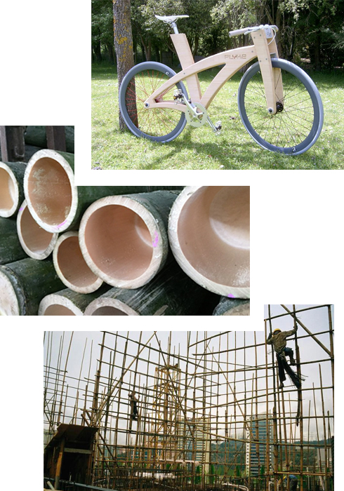 Plantation_bamboo_bike_panels_natural_joinery_design_building_eco-friendly_sustainable_hard_durable