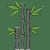 Plantation_bamboo_beautiful_