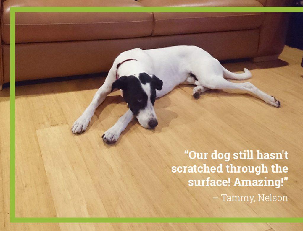 bamboo-flooring-pets